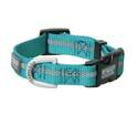 Medium Teal Reflective Snap-N-Go Adjustable Nylon Dog Collar