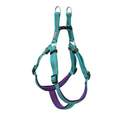 Large Teal Reflective Neoprene Lined Dog Harness