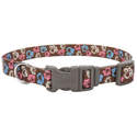 5/8 x 14-Inch Styles Special Paw Brown Adjustable Dog Collar