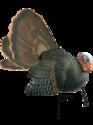 Alternate Image for Primos Hunting 69021 Killer B Turkey Decoy