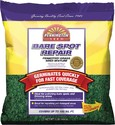 Pennington Seed 22071 Bare Spot Repair Mix Central 1lb