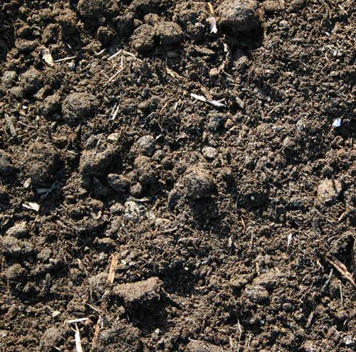 Sutherlands springdale compost mushroom gardners secret at for Mushroom soil