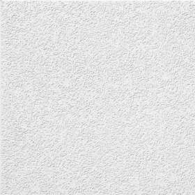 Armstrong BP266 Brighton 2x2 Ceiling Tile Per Piece