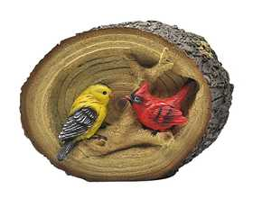 Coleman Cable 92359 Birds In A Log