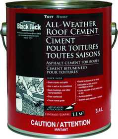 Gardner-Gibson 6230-9-34 Black Jack Wet/Dry Surface Plastic Cement .9 Gal