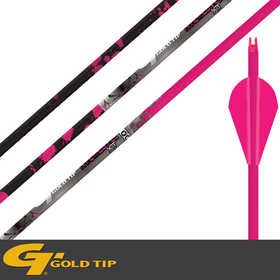 Gold Tip NTGPKXT500B Name Of The Game-Xt 500shft 2 InVANE Pink Dozen