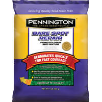 Pennington Seed 0276949 Penn Bare Spot Repair-Central