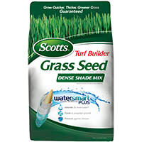 Scotts 0280446 Scts Tb Dense Shade 3lb