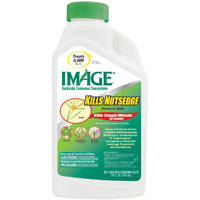 Ambrands 100099405 24 oz Image For Nutsedge Conc