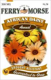 Ferry-Morse Seed Company 1002 African Daisy Mixed Seeds