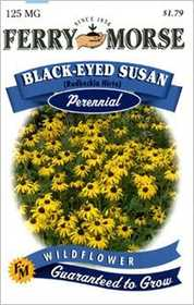 Ferry-Morse Seed Company 1017 Black-Eyed Susan Seeds