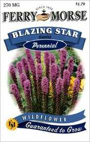Ferry-Morse Seed Company 1019 Blazing Star Seeds