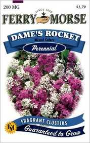 Ferry-Morse Seed Company 1044 Dames Rocket Seeds