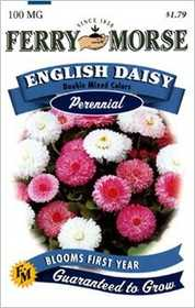 Ferry-Morse Seed Company 1047 English Daisy Double Seeds
