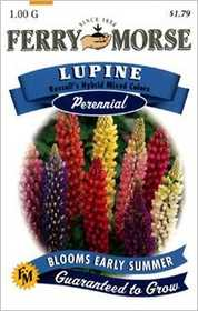 Ferry-Morse Seed Company 1075 Lupine Russells Mix Seeds