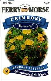 Ferry-Morse Seed Company 1130 Primrose Sundrops Seeds
