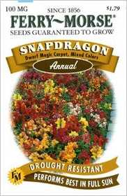 Ferry-Morse Seed Company 1142 Snapdragon Dwarf Magic Seeds