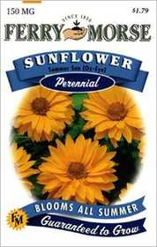 Ferry-Morse Seed Company 1154 Sunflower Oxeye Seeds
