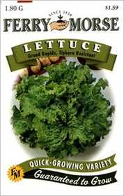 Ferry-Morse Seed Company 1304 Lettuce Grand Rapid Seeds