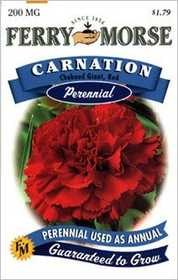 Ferry-Morse Seed Company 1653 Carnation Chab Red Seeds
