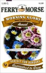 Ferry-Morse Seed Company 1898 Morning Glory Dwarf Mixed Color Seeds