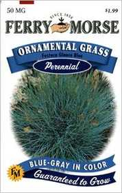 Ferry-Morse Seed Company 1903 Ornamental Grass Blue Seeds