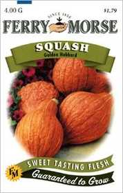 Ferry-Morse Seed Company 1970 Squash Golden Hubbard Seeds