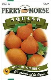 Ferry-Morse Seed Company 2101 Squash Golden Health Seeds