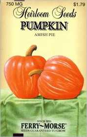 Ferry-Morse Seed Company 3750 Pumpkin Amish Pie Seeds