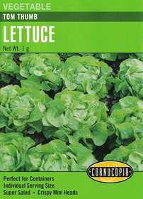 Cornucopia Garden Seeds 280 Tom Thumb Lettuce Seeds