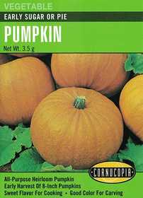 Cornucopia Garden Seeds 223 Early Sugar Or Pie Pumpkin Seeds