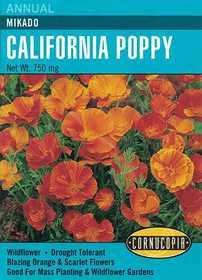 Cornucopia Garden Seeds 229 Mikado California Poppy Seeds