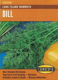 Cornucopia Garden Seeds 143 Long Island Mammoth Dill Seeds