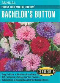 Cornucopia Garden Seeds 113 Polka Dot Mixed Color Bachelor's Button Seeds