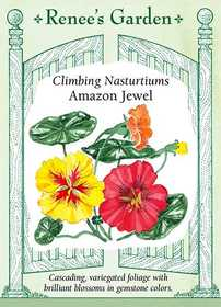 Renee's Garden Seed Co. 5044 Amazon Jewel Climbing Nasturtium Seeds