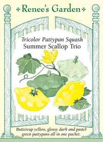 Renee's Garden Seed Co. 5078 Summer Scallop Trio Tricolor Pattypan Squash Seeds