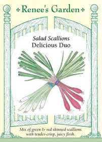 Renee's Garden Seed Co. 5157 Delicious Duo Salad Scallion Seeds