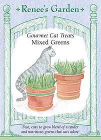 Renee's Garden Seed Co. 5316 Mixed Greens Gourmet Cat Treat Seeds