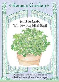 Renee's Garden Seed Co. 5459 Windowbox Mini Basil Kitchen Herb Seeds
