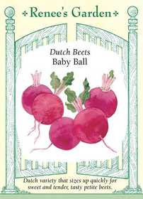 Renee's Garden Seed Co. 5572 Baby Ball Dutch Beet Seeds