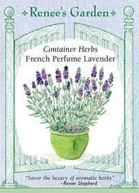 Renee's Garden Seed Co. 5832 French Perfume Lavender Container Herb Seeds