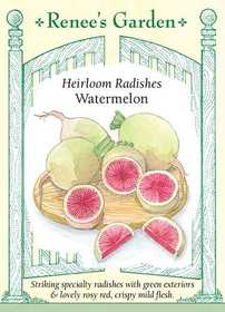 Renee's Garden Seed Co. 5866 Watermelon Heirloom Radish Seeds