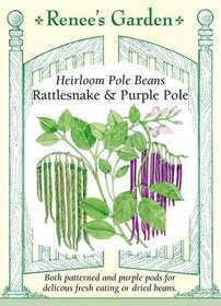 Renee's Garden Seed Co. 5930 Rattlesnake And Purple Pole Heirloom Pole Bean Seeds