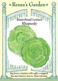 Renee's Garden Seed Co. 5939 Rhapsody Butterhead Lettuce Seeds