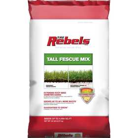Pennington Seed 100519431 Rebel Tall Fescue Mix Powder Coated Seed 20lb