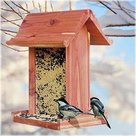 Perky Pet 50105 The Station Seed Feeder 3lb