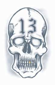 Tinsley Transfers Inc. PR-313 13 Skull Temporary Tattoo