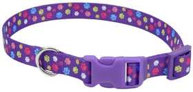COASTAL PET PRODUCTS CP6421SPW1014 10 in -14 in Adjustable 5/8 in Dog Collar, Special Paw
