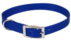 COASTAL PET PRODUCTS CP401BLU12 Single Ply 5/8 in X 12 in Nylon Dog Collar, Blue