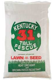 Tri Star Seed 50LB Ky31 Tall Fescue Grass Seed 50lb